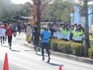 29回三田マラソン沿道6